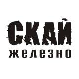 Поисковое продвижение сайта дверей и ворот Sky-doors.ru